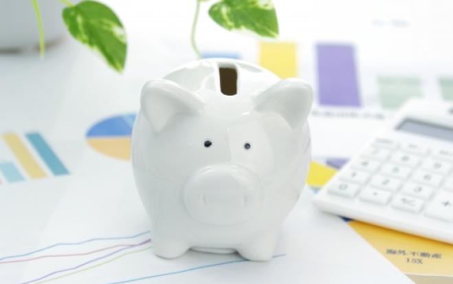 政府国内投資促進事業費補助金